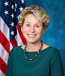 Chrissy Houlahan, official portrait, 116th Congress.jpg