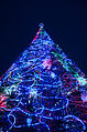Christmas tree at Darling Harbour 2012.jpg