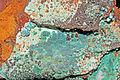 Chrysocole sur goethite (Ojuela Mine - Mexique).jpg