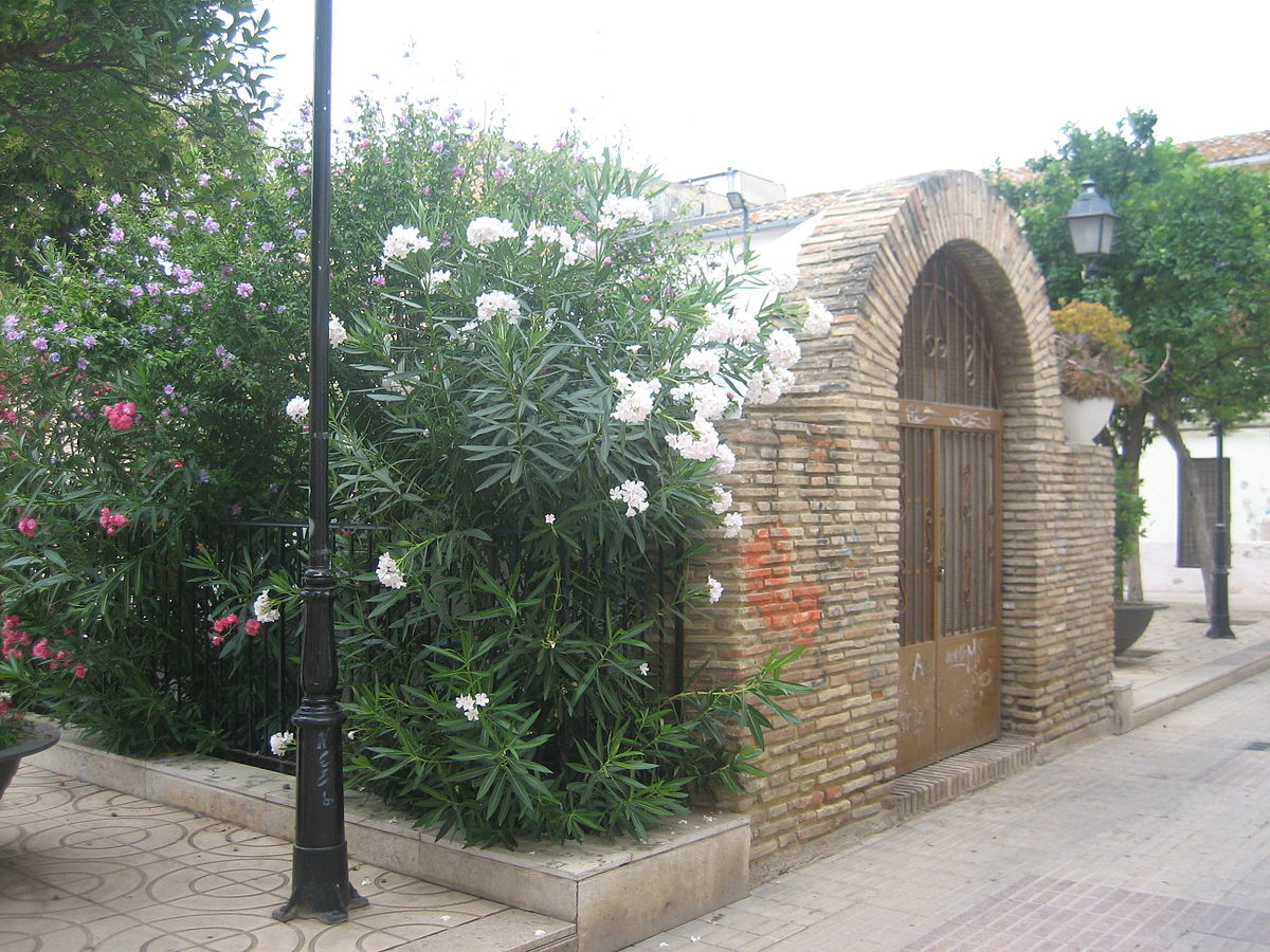 Cisterna rabe de cuart de poblet wikipedia la for Gimnasio quart de poblet