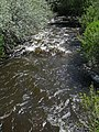 Clear Creek (Buffalo, Wyoming, USA) (1 June 2017) 4 (34201797414).jpg
