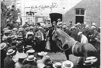 Clever Hans - Clever Hans performing in 1904
