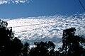 Clouds2june2010 (4729446200).jpg