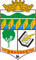 Coat of arms of Braúnas MG.PNG