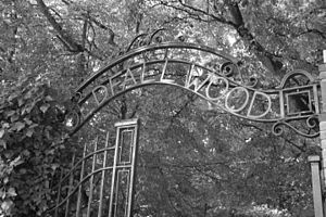 Coldfall Wood - Southern entrance to Coldfall Wood