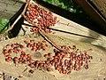 Collettivo Rosso Nero (11122237564).jpg