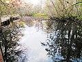 Corkscrew - Lettuce Lakes.jpg
