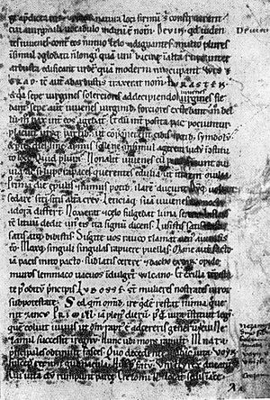 Cosmas of Prague - Page of  manuscript of Chronica Boemorum. Near the bottom of the page are the names of seven legendary dukes, who came after Přemysl, the Ploughman.