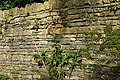 Cotswold stone wall - geograph.org.uk - 964952.jpg