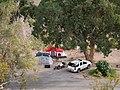 Cottonwood Cove Upper Campground (55d17f9b-9533-401a-a85d-37eb623cb2c6).jpg