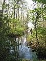 Creek at Andresna - geograph.org.uk - 798309.jpg