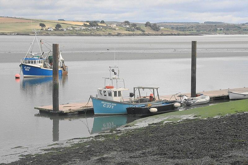 File:Cullenagh, Co. Cork, Ireland - panoramio.jpg