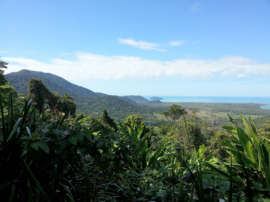 Daintree National Park, Queensland 02