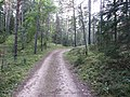 Degučių sen., Lithuania - panoramio (225).jpg