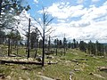 Devils Hole National Monument (34631214120).jpg