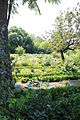 Dijon - Jardin de l'Arquebuse - Jardin botanique X07.JPG