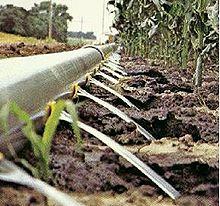 Irrigatie wikipedia - Arrosage goutte a goutte fait maison ...