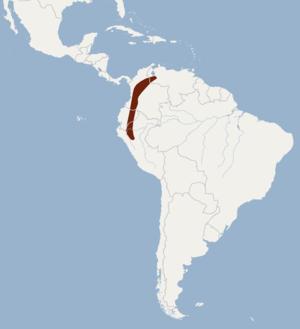 Aratathomas's yellow-shouldered bat - Image: Distribution of Sturnira aratathomasi