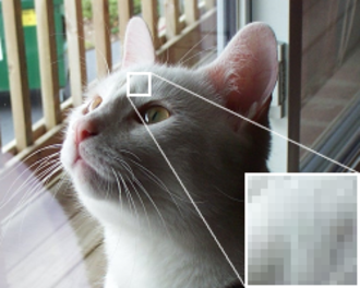 Pixelation - An example of pixelation. The image looks smooth when zoomed out, but when a small section is viewed more closely, the eye can distinguish individual pixels.