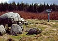 Dolmen de la pierre Courcoulée. (1).jpg