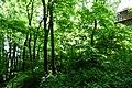 Dolny Sopot, Sopot, Poland - panoramio (41).jpg