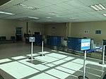 Domestic departure check-in.jpg