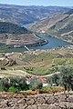Douro River DSC 0450 (16870357809).jpg
