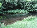 Dovedale - River Dove below Dovedale Castle - geograph.org.uk - 861217.jpg