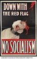 Down With The Red Flag (3268709687).jpg