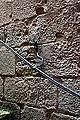 Dragon handrail - Monastery of Poblet - Catalonia 2014 (2).JPG