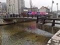 Drvenija most nizvodno 24022014377.jpg