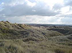 A grass-covered dune complex in North Devon.