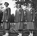 Dutch Olympic gymnastics team 1952a.jpg