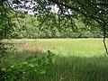 Duvenstedter brook stehörnsmoor.jpg