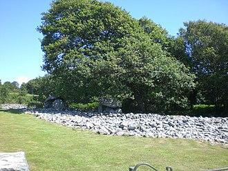 Dyffryn Ardudwy - Image: Dyffryn Burial chamber west side, nr. Barmouth, Wales