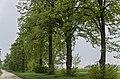 Eckartsau-2646.jpg