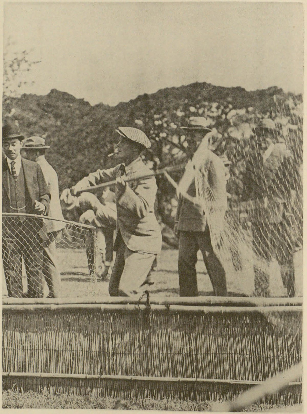Duck netting - Wikipedia 62d6425e5432