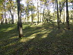 Effigy Mounds Iowa Sny Magill.JPG
