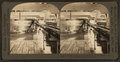Electric Conveyor for cases of oil for export, Port Arthur, Texas, U.S.A., by Keystone View Company.png