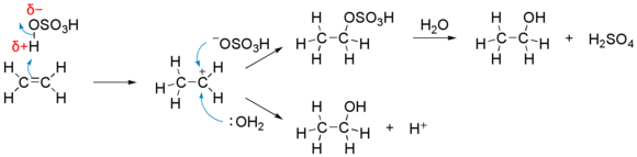 Electrophilic reaction of sulfuric acid with ethene.png