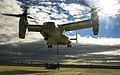 Embracing the Whirlwind, Crisis Response Marines hone heavy-lift capabilities in Spain 150119-M-ZB219-219.jpg