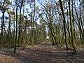 Emmerich am Rhein Speelberg Im Duvendahl PM19-01.jpg