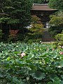 Enjo-ji Garden 05.jpg