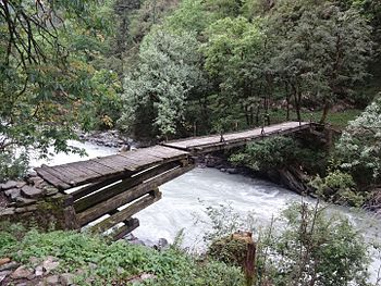 Environment friendly bridge.jpg