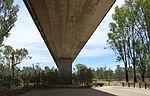Euston-Robinvale Bridge 002.JPG
