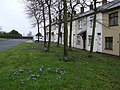 Fairmount Avenue, Omagh - geograph.org.uk - 1193180.jpg