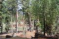 Fairy Meadows Nanga Parbat 34.JPG