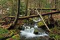 Fall Creek (Revisited) (8) (11659624045).jpg