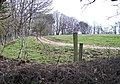 Farm track leading to Glasfryn Fawr - geograph.org.uk - 1801939.jpg