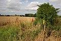 Farmland by Burgh Stubbs - geograph.org.uk - 914459.jpg